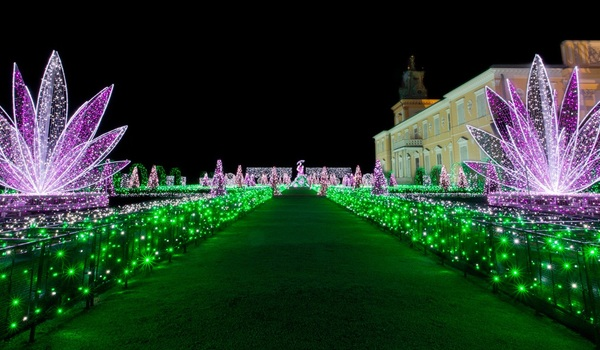 Going. | Królewski Ogród Światła - Muzeum Pałacu Króla Jana III w Wilanowie